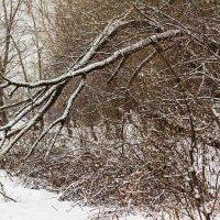 Зима в городе :: Александр