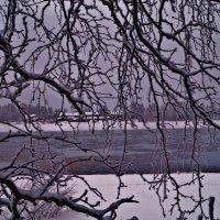 где то там за ветвями деревьев :: Валерия Воронова