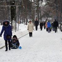 В зимнем парке. :: Лара ***