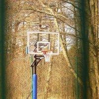 баскетбол :: Sony 2 Sony 2