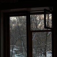 За окном.16.01.2017г. :: Виталий Виницкий