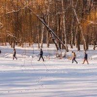 Мальчики, лед надежный можно идти. :: shabof