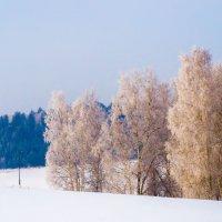 Зимняя сказка :: Константин Батищев