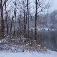 Снежная нежность,  Нежная снежность,  Тонкая нить серебра...... :: Galina Dzubina