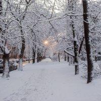 Утром -зима :: Варвара