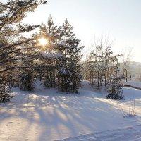 Морозное утро :: Ульяна Загуменная