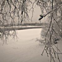просто ,красиво) :: Валерия Воронова