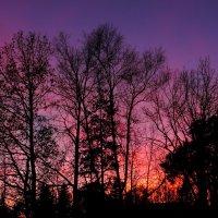 В сто сорок солнц закат пылал... :: Михаил Медведев