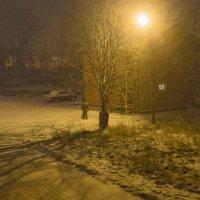 а снег идёт, а снег идёт... :: Ольга Лиманская