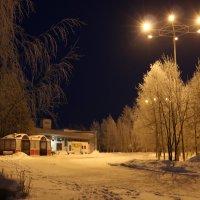 Снежный вечер :: Ольга