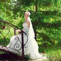 невеста :: Софья