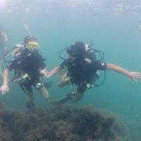 Отдых на море, Крым. Дайвинг. Подводная сьёмка-3. :: Руслан Грицунь