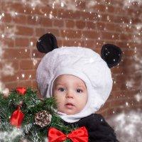 новый год :: Елизавета Забродина