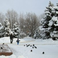 Был снежный январь :: Татьяна Смоляниченко