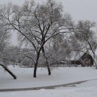 Избушка в снегу.. :: zoja