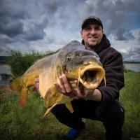 Рыба :: Дмитрий