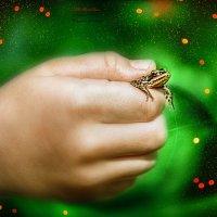 лягушонок :: Anastasiya Ageeva