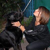 Встреча друзей :: Татьяна Пальчикова