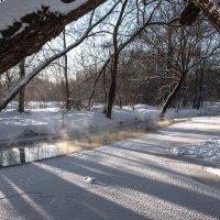 Морозно и солнечно :: Владимир Безбородов