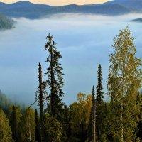 На краю тумана :: Сергей Чиняев