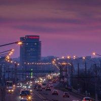 Центральный мост :: Artem Zelenyuk