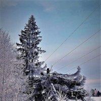 Судьба или Не судьба :: Валерий Талашов