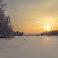 По замерзшей протоке :: cfysx