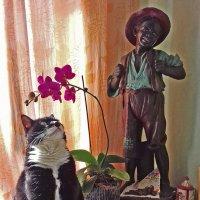кошка и мышка :: Александр Корнелюк