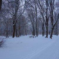 """""""Летучий снег, вводи нас в заблужденье, Нашёптывай, что ждёт нас наслажденье..."""" :: Galina Dzubina"""