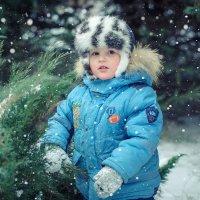 Зимняя сказка :: наталья Дубовая