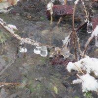 Зимний ручей вблизи. :: Вячеслав Медведев