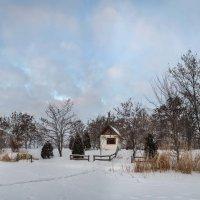 Зима... Морозная и снежная, для кого-то долгожданная, а кем-то не очень любимая, но бесспорно – прек :: Лидия Цапко