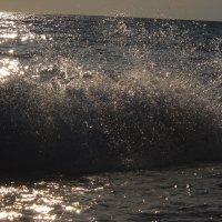 Море брызги :: Александр Попков