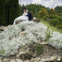 Свадебная пара :: Олеся Загорулько