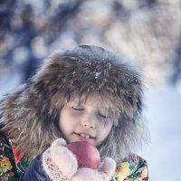 зимнее яблочко :: Юлия Коноваленко (Останина)