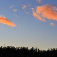 Розовые облака заката :: Николай Масляев