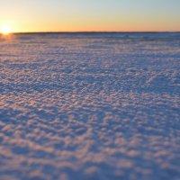 Снега и закат. В Северодвинске. :: Михаил Поскотинов