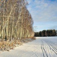 Лыжня по замёрзшему озеру :: Милешкин Владимир Алексеевич