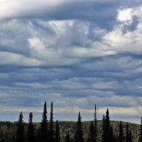 Густеющее небо :: Сергей Чиняев