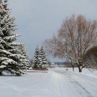Зимушка-зима :: Ирина Олехнович