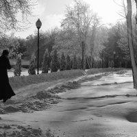 Навстречу солнцу :: Ольга Нарышкова
