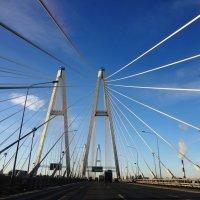 Мост :: Яна