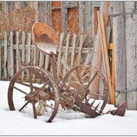 В зимней спячке. :: Марина Никулина