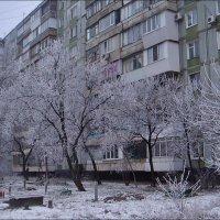 Как тут не вспомнить о весне... :: Нина Корешкова