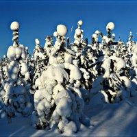 В зимней одежде :: Leonid Rutov