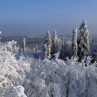 Зимние просторы :: Валерий Чепкасов