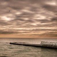 Январское море :: Виктория Бондаренко