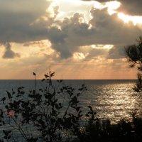 море в январе :: дмитрий панченко