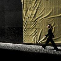 Черное и желтое :: Людмила Синицына