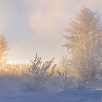 Рождественское утро. :: Андрей Олонцев